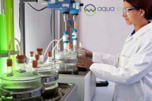 anaerobic digestion trials